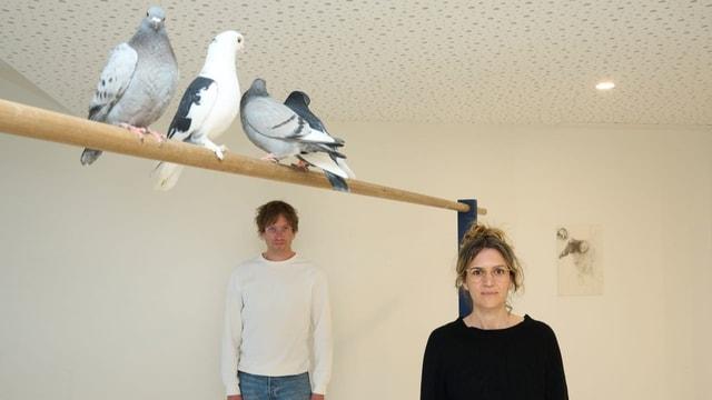 Diese Tauben sind Performance-Künstlerinnen