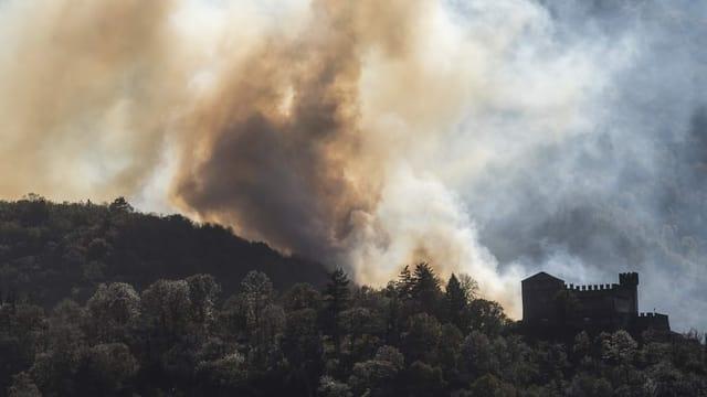 Erhöhte Waldbrandgefahr: Was die Schweiz vom Tessin lernen kann