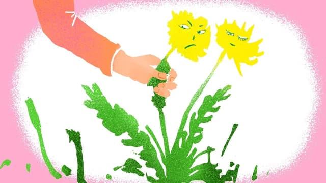 Pflanzen kennen keinen Schmerz – oder?