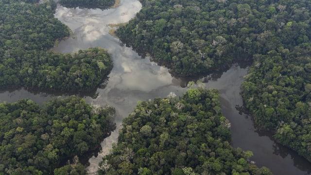 Superreiche spenden 5 Milliarden für die Biodiversität