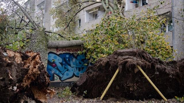Sturmtief Hendrik sorgt für Schäden in Westeuropa