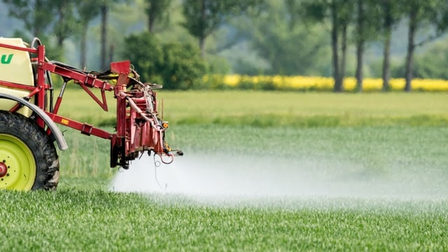 Geht Landwirtschaft ganz ohne Gift?