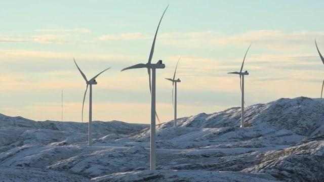 Indigene Sami gewinnen Rechtsstreit um Windkraft-Park