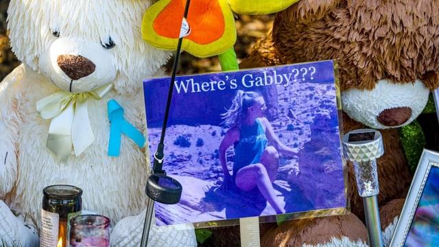 Die Welt bangt um Gabby: Ein Kriminalfall geht viral