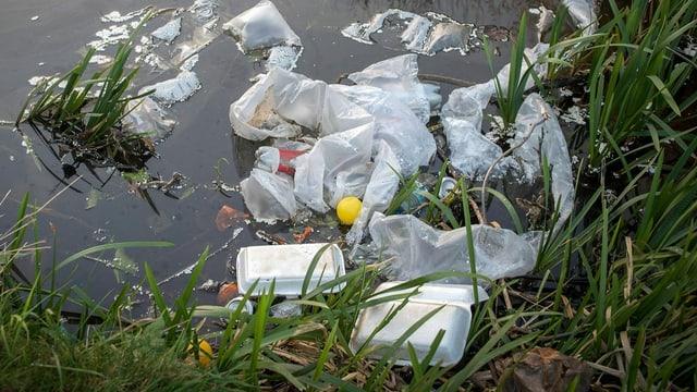 Plastik: Um uns herum und in uns drin